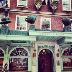 Fortnum & Mason Teacup Topiary